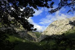 paisajes de ponga